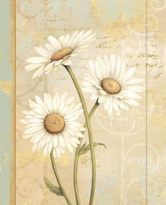 Classic journal beautiful daisies
