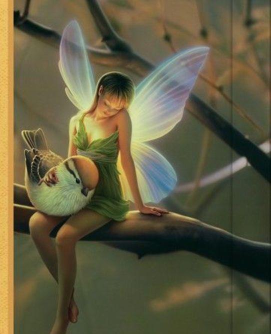 Classic sjournal fairy1